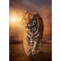 Clementoni Tiger Jigsaw Puzzle 1500 Pieces